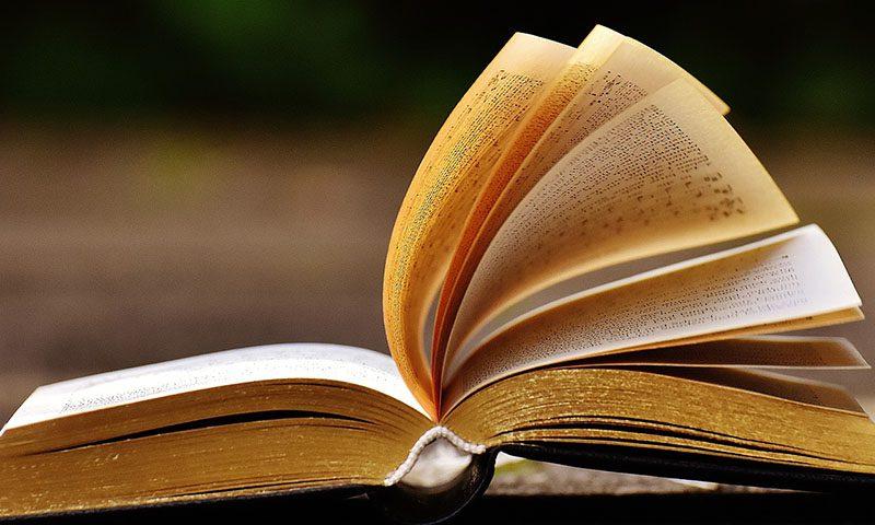 paolo giorgio bassi bookcity indagine nel mondo della letteratura