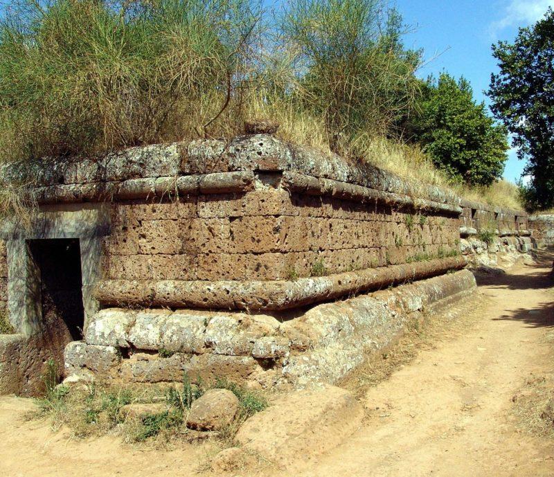 dna degli etruschi